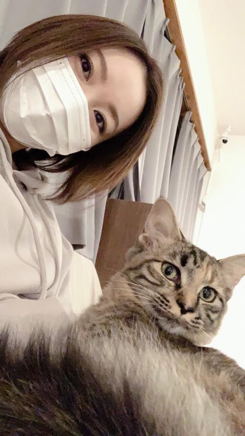 りほのブログ:猫さん(2回目)